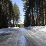 spring-road-hazards